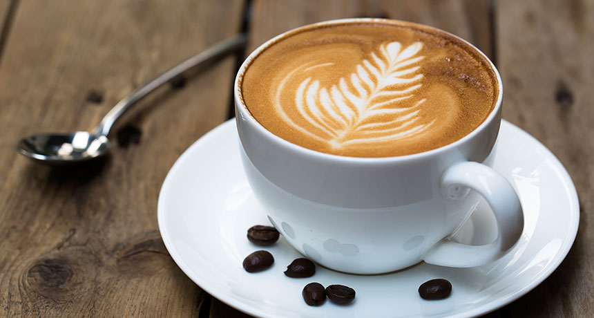 Best Semi Automatic Espresso Machines For Home - Do you know how to choose