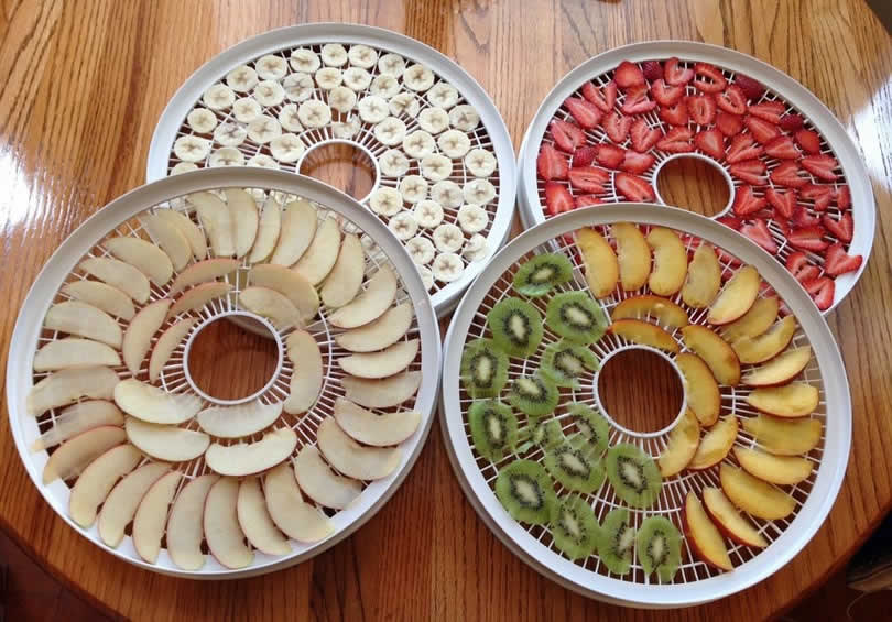 Best Home Food Dehydrators - How To Make Healthy Snack With No Additives & Preservatives