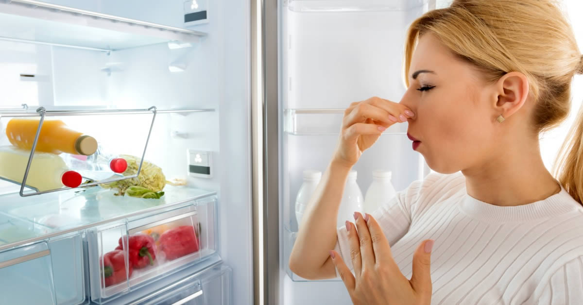 Tip 6 Remove The Smell Of The Refrigerator