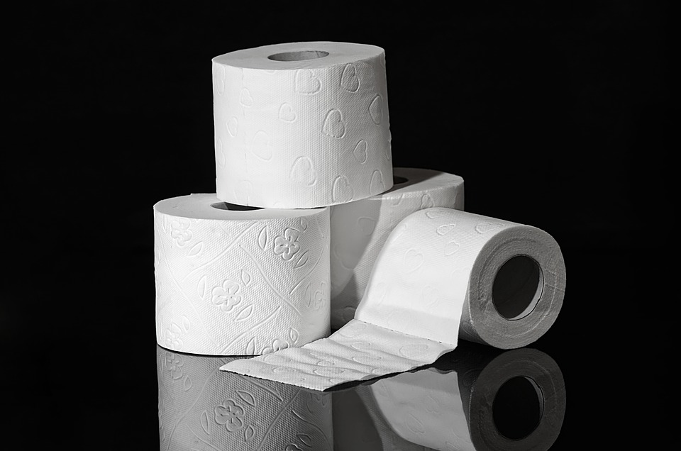 How To Choose The Best Rated Toilet Paper