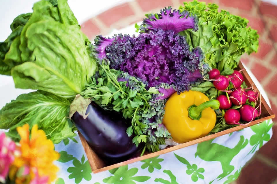 Keep The Vegetables Fresh