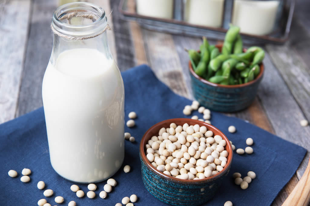 How To Choose The Soymilk Maker